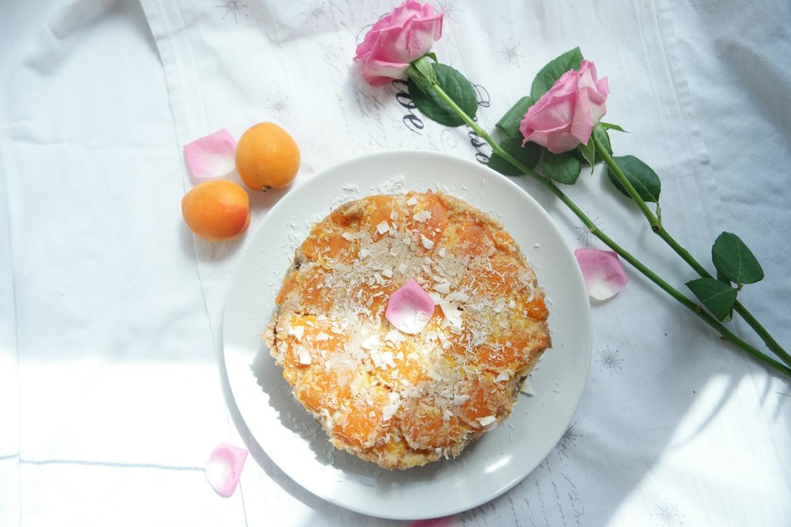 Warm Spiced Apricot Cake (Vegan, GF, DF)